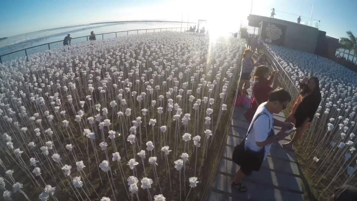 Trip to 10,000 roses and Lantawmotovlog